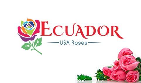 Ecuador USA Roses